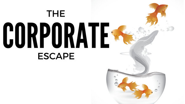 how-to-escape-the-corporate-world-and-survive